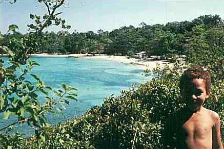 Monkey Island Tom Cruise